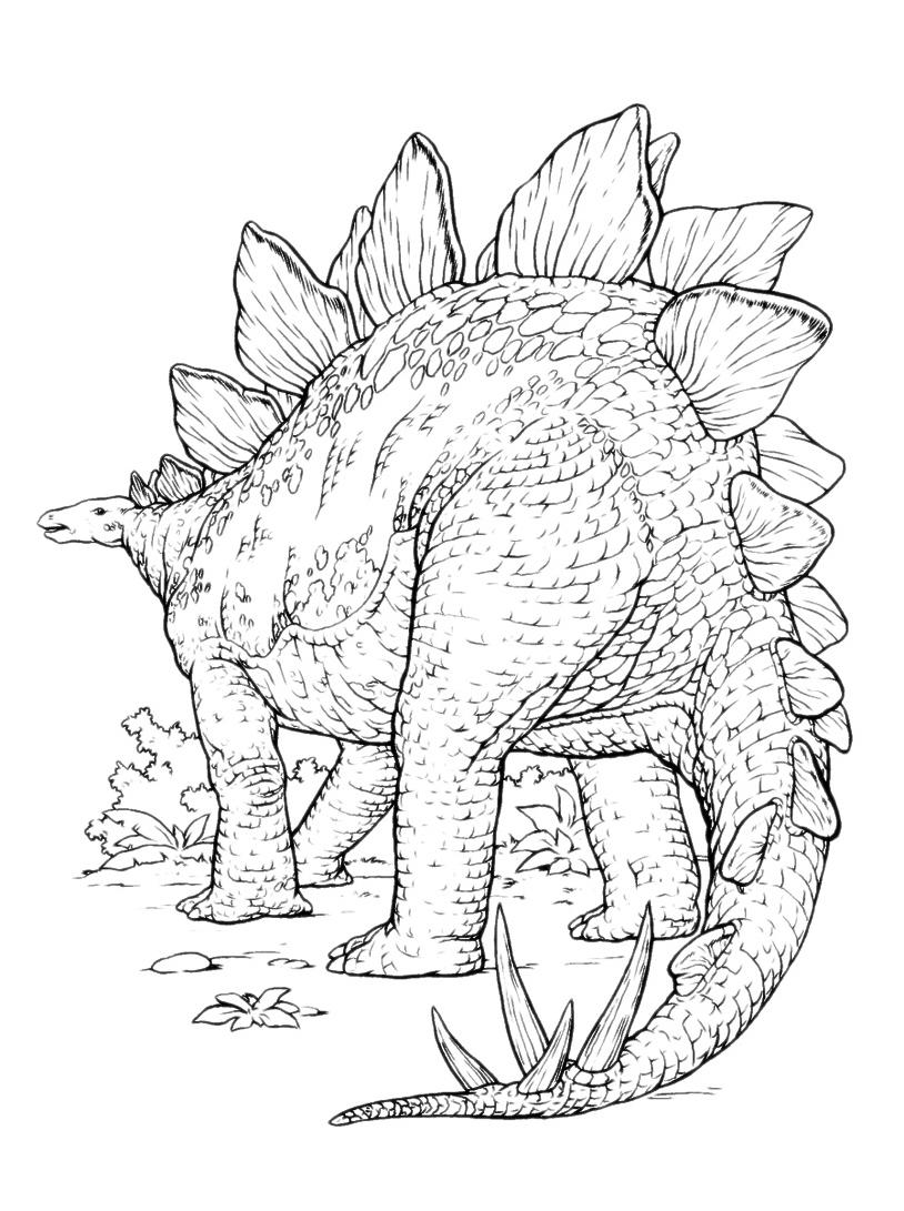 Dinosauro da colorare 123