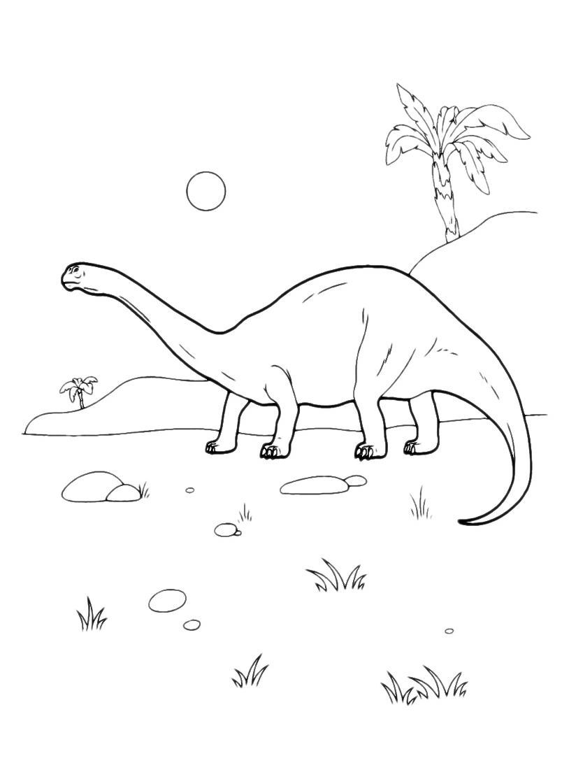 Dinosauro da colorare 127