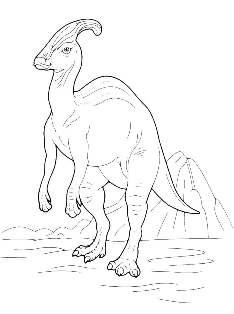 Dinosauro da colorare 128