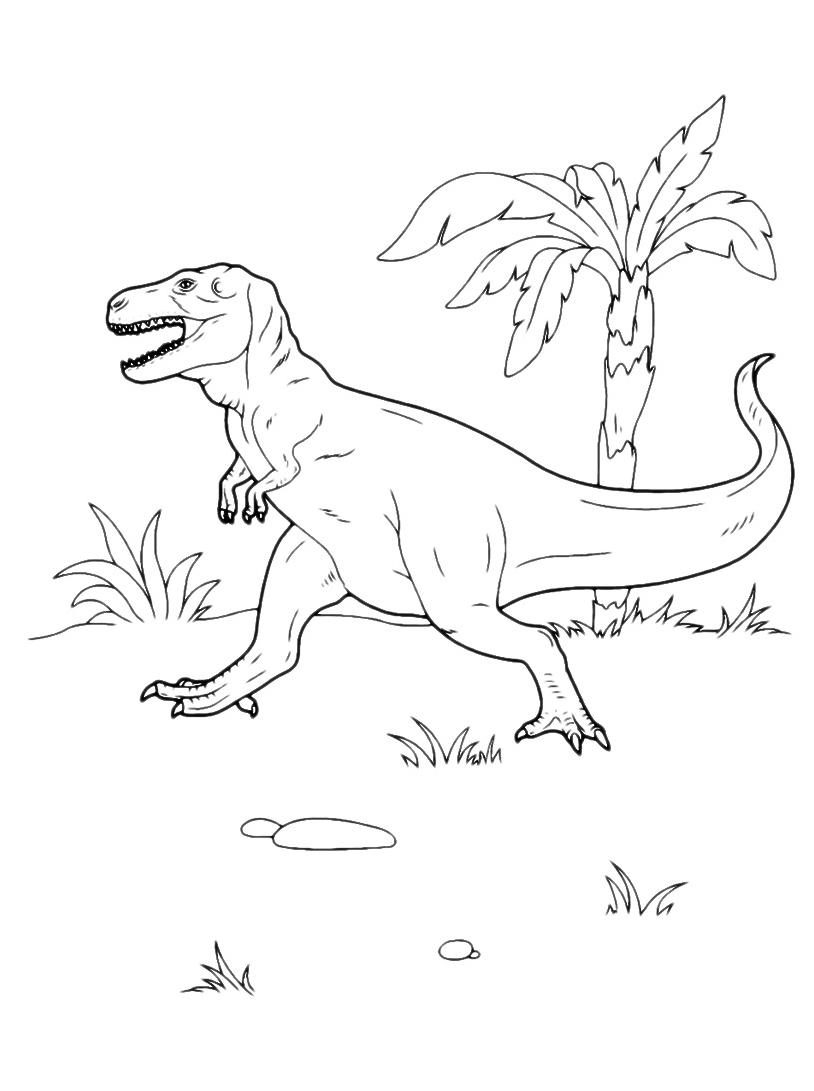 Dinosauro da colorare 133