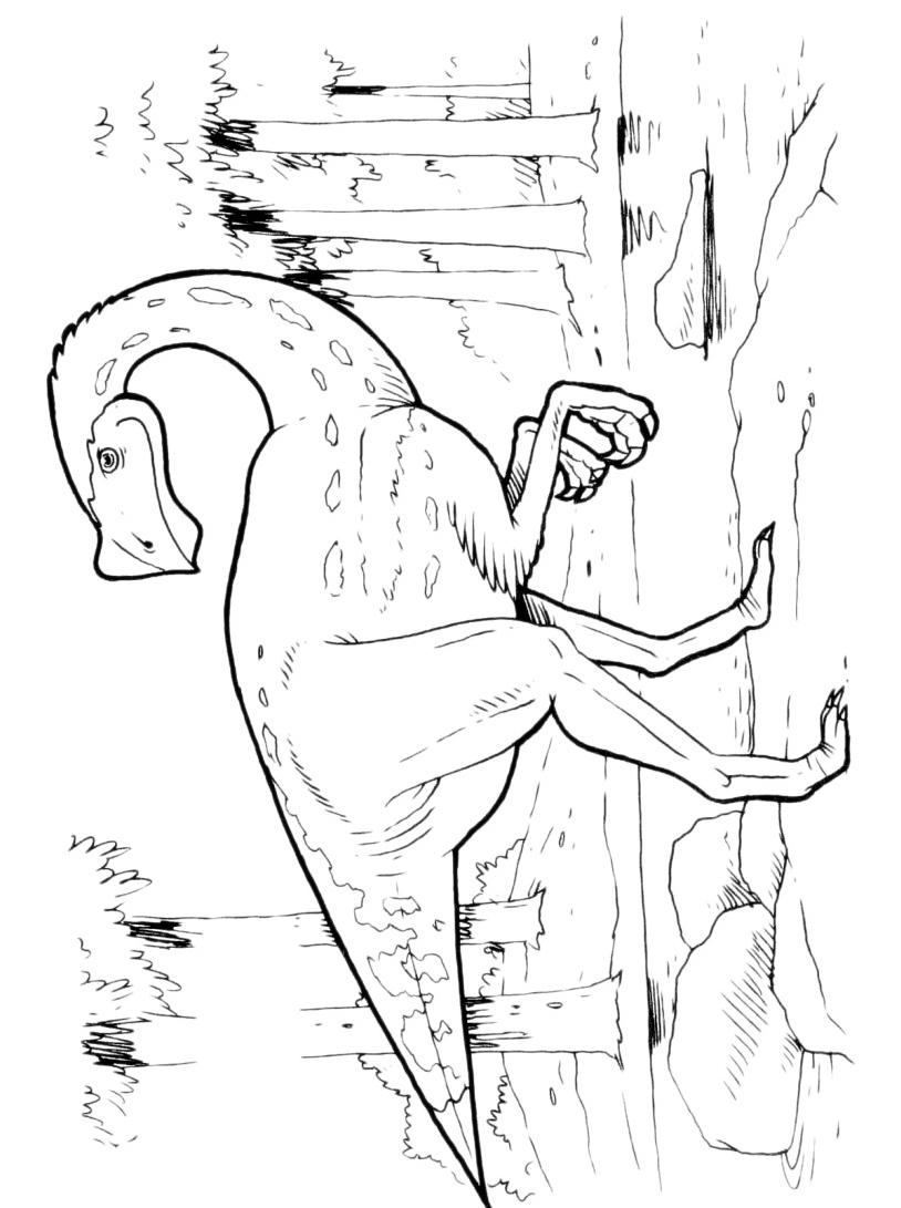 Dinosauro da colorare 152