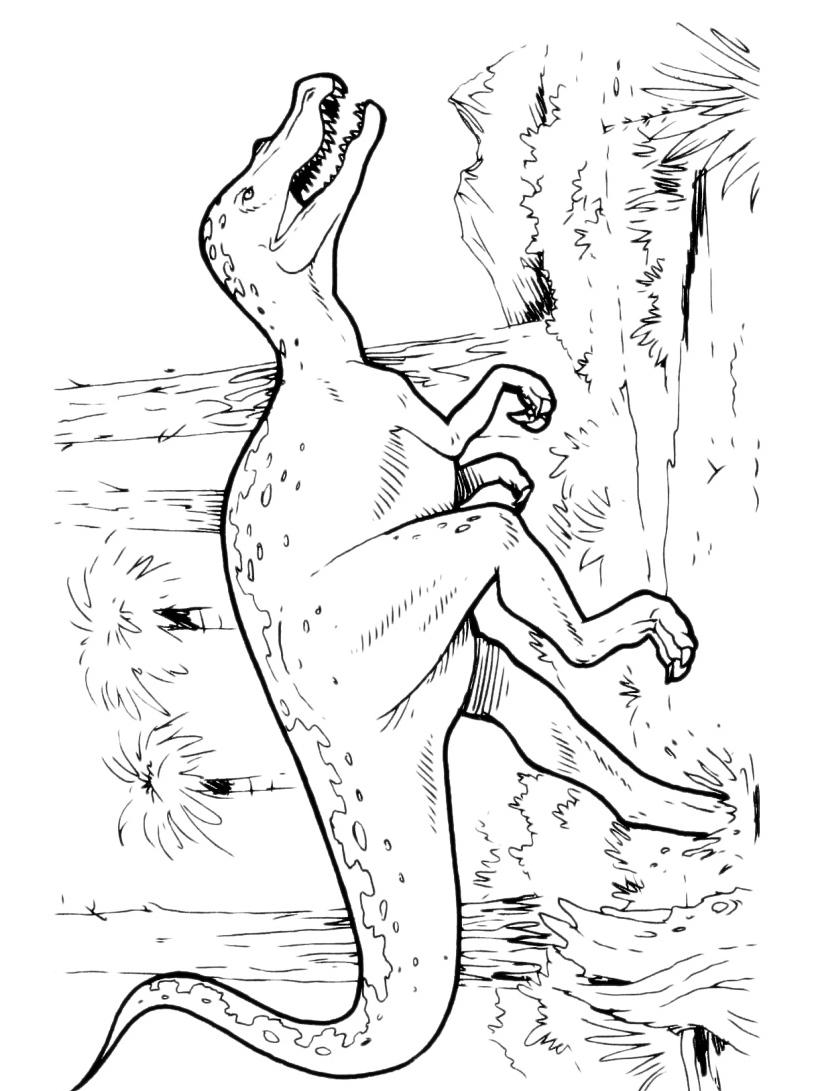 Dinosauro da colorare 153