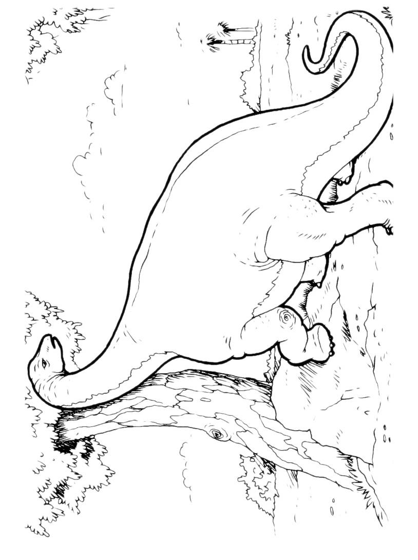 Dinosauro da colorare 155