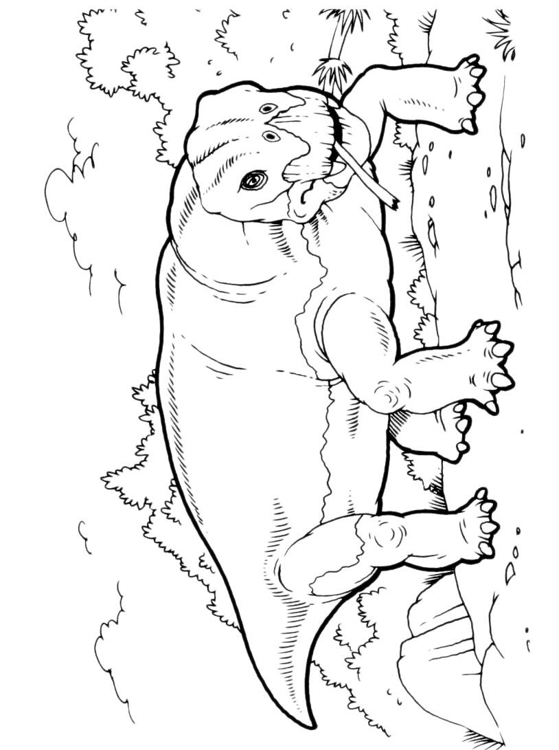Dinosauro da colorare 156