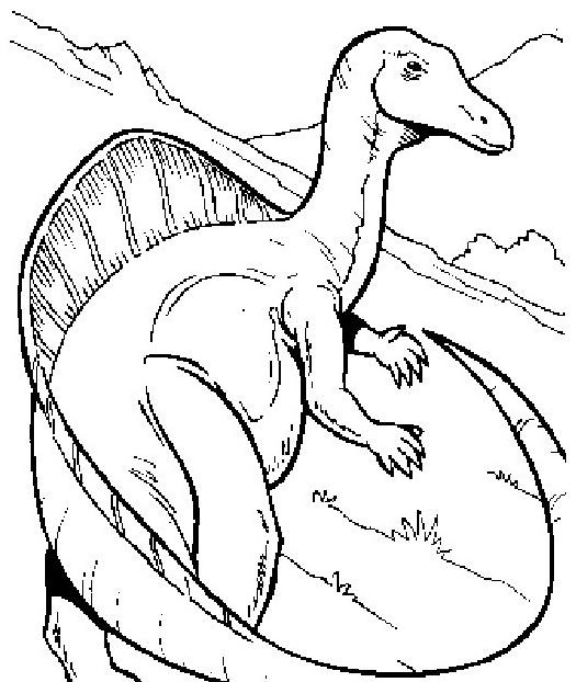 Dinosauro da colorare 235