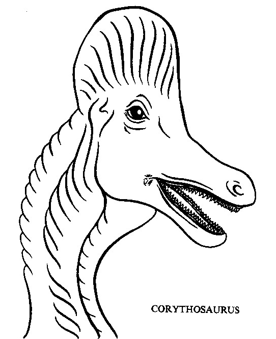 Dinosauro da colorare 291