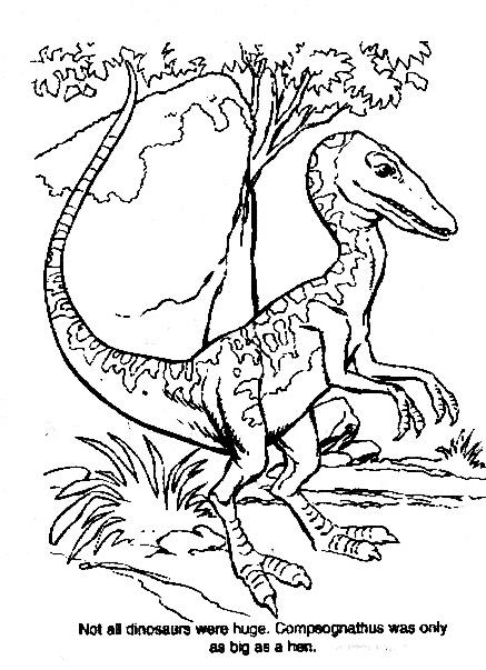 Dinosauro da colorare 305