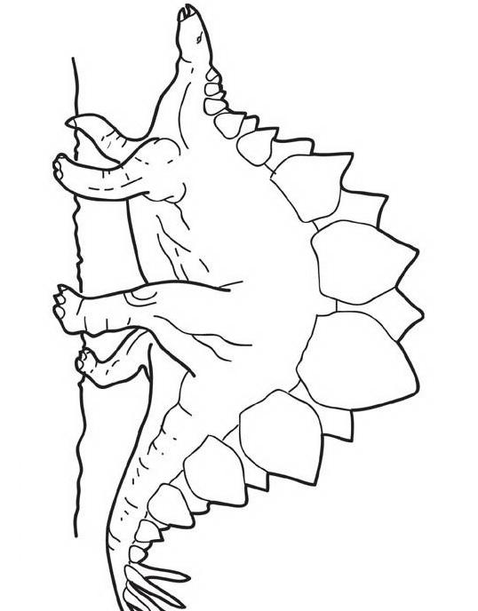 Dinosauro da colorare 313