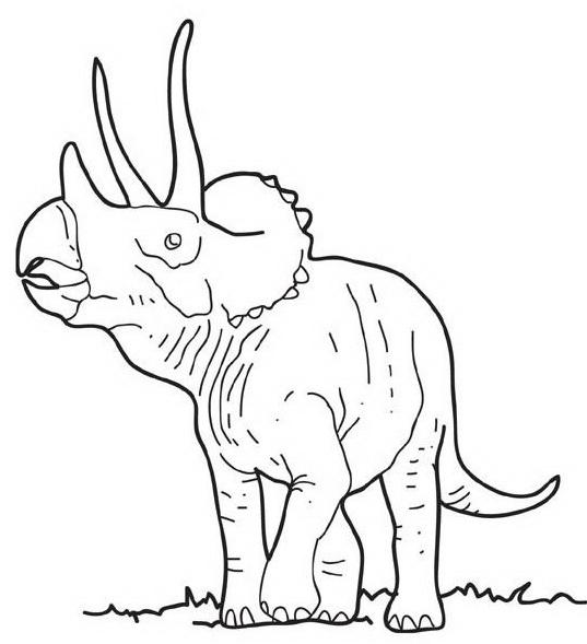 Dinosauro da colorare 314