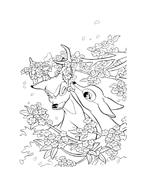 Bambi da colorare 164