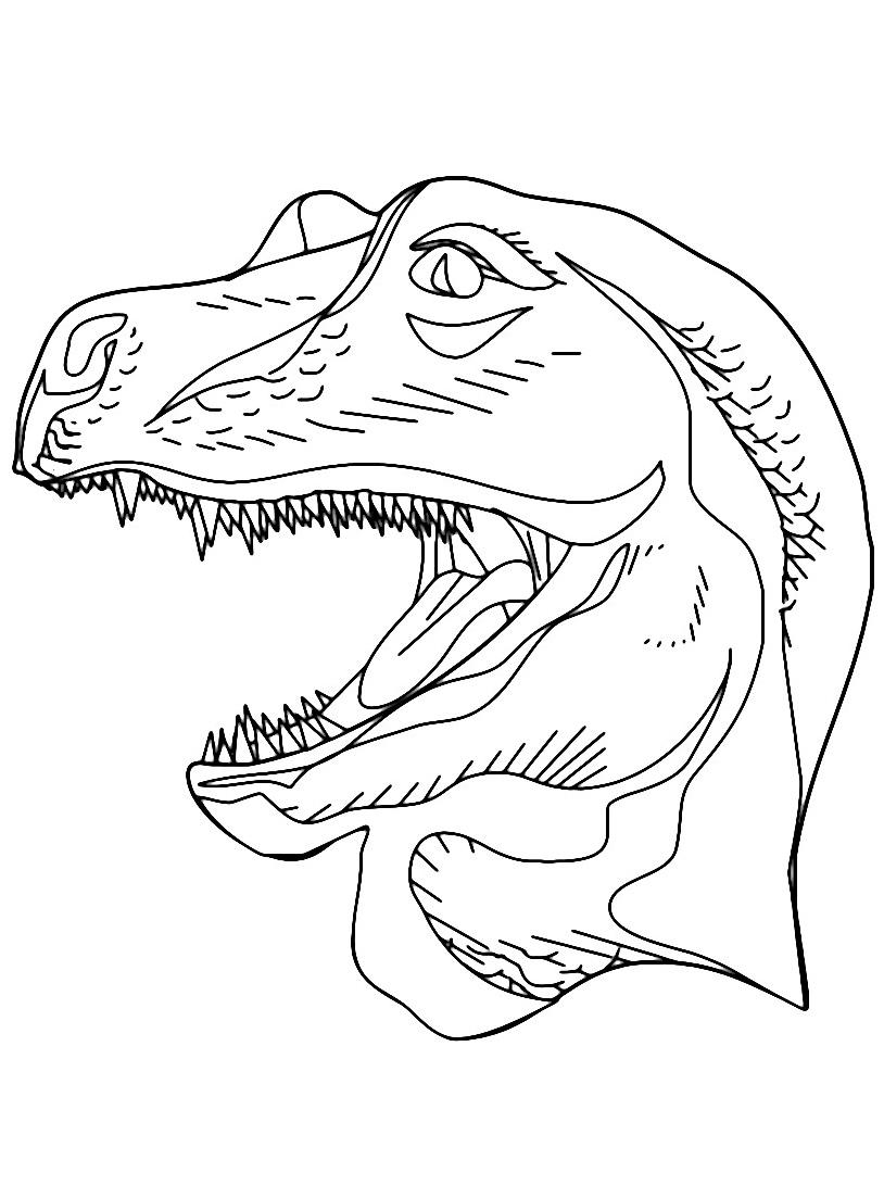 Dinosauro da colorare 328