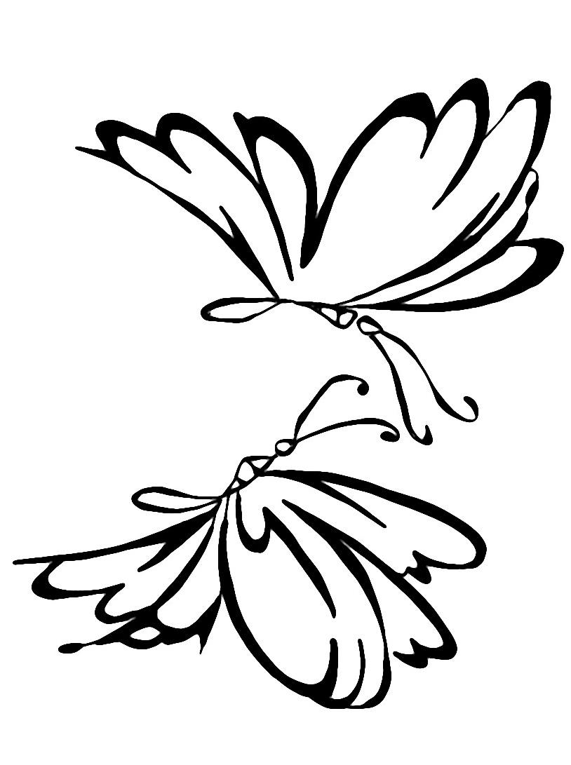Farfalla da colorare 12