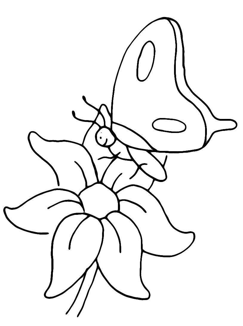 Farfalla da colorare 14