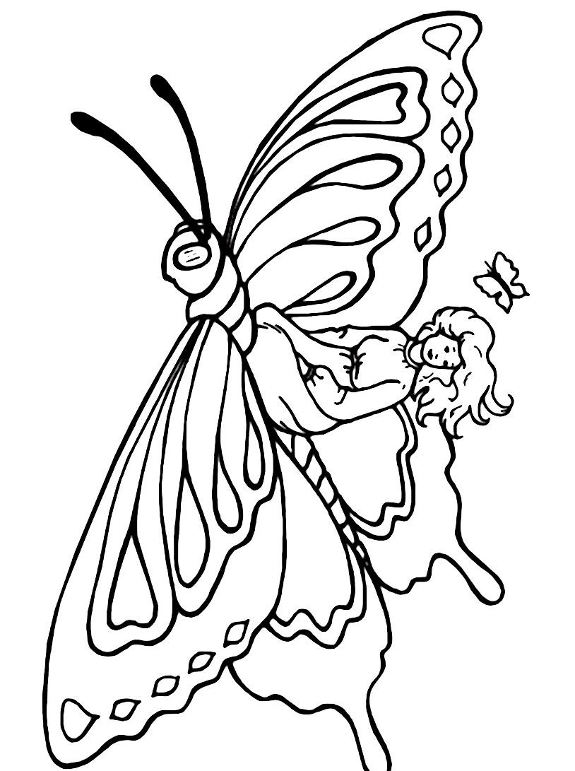 Farfalla da colorare 15