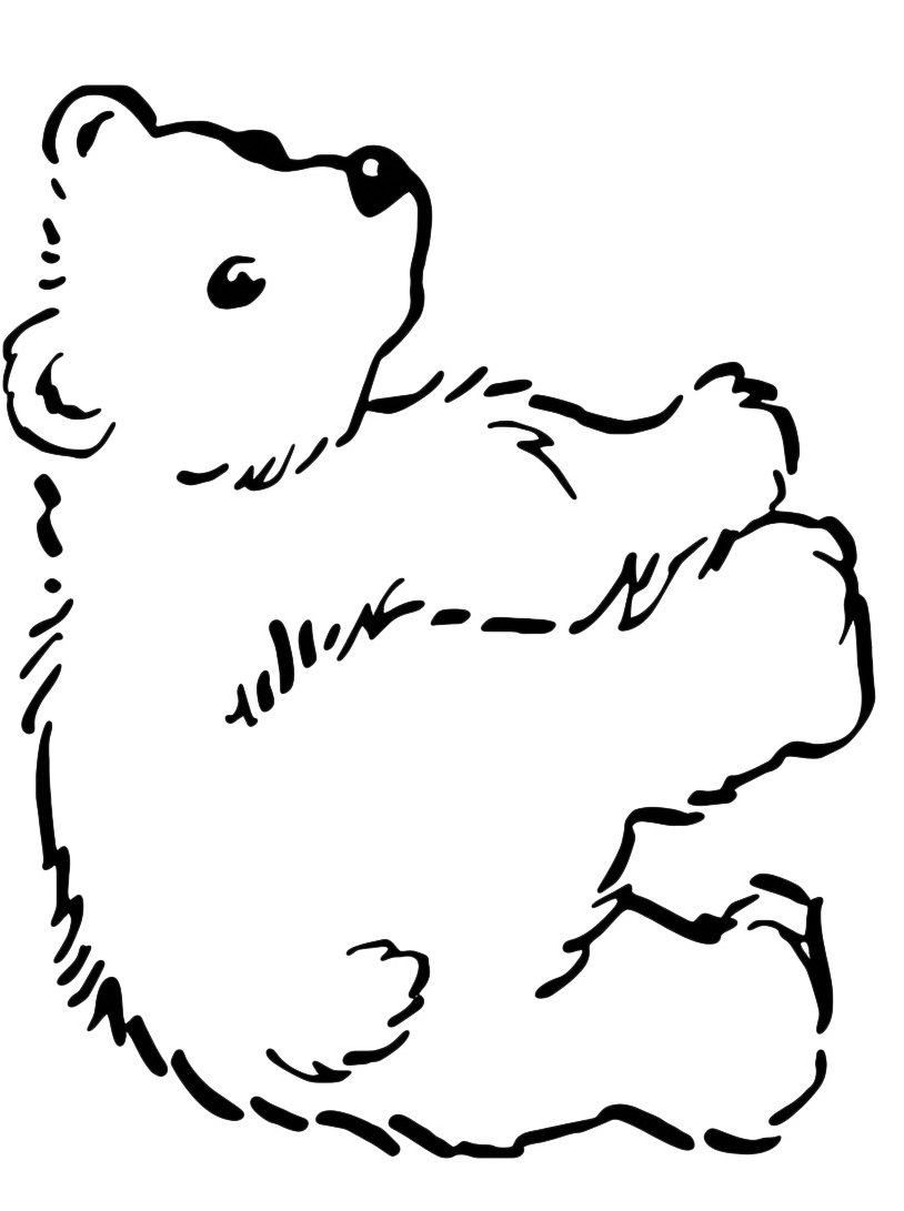 Orso da colorare 26