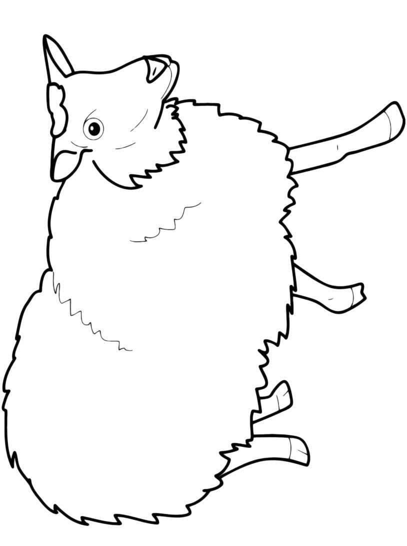 Pecora da colorare 7