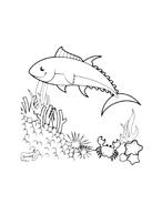 Pesce da colorare 25