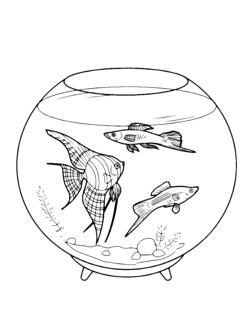 Pesce da colorare 35