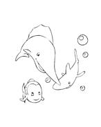 Pesce da colorare 38
