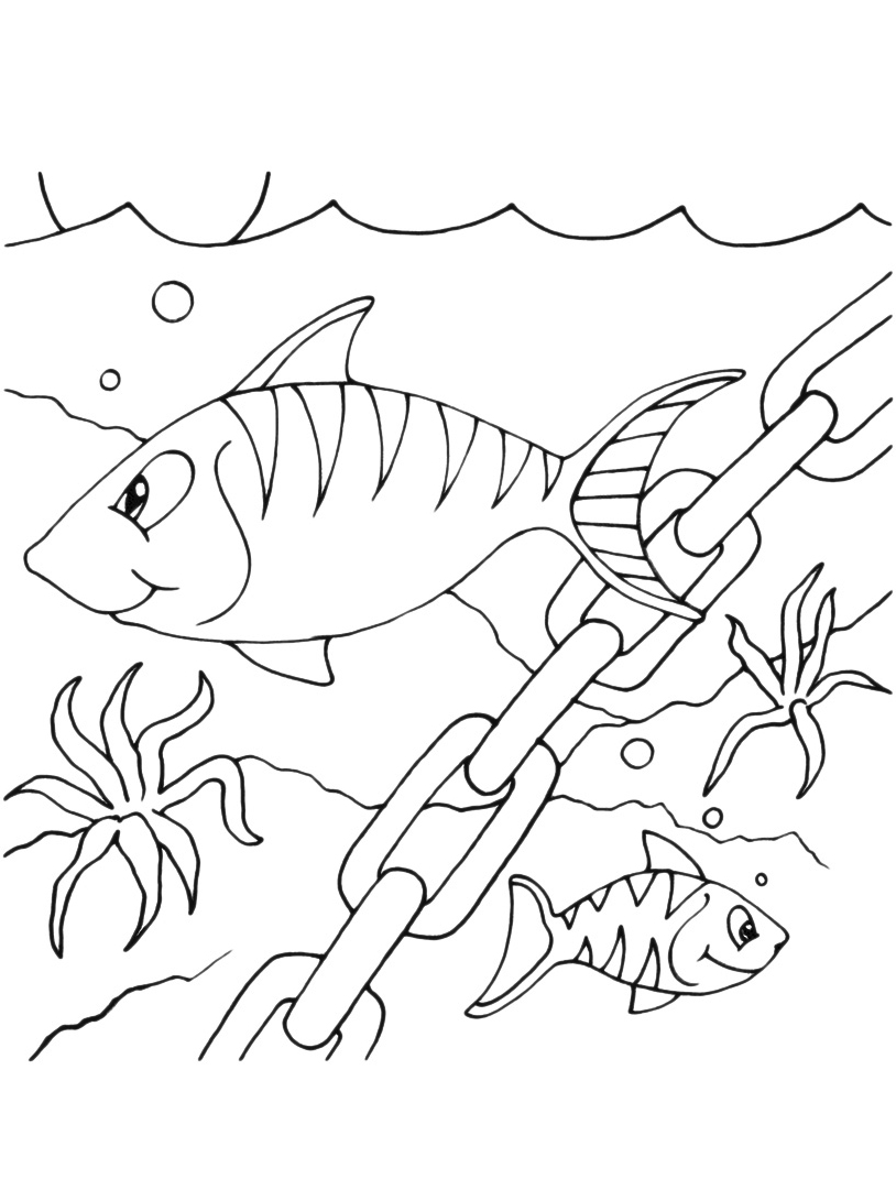 Pesce da colorare 45