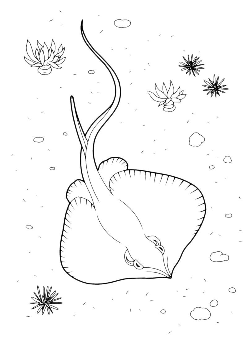 Pesce da colorare 46