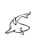 Pesce da colorare 48