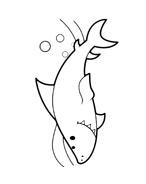 Pesce da colorare 69