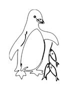Pinguino da colorare 2