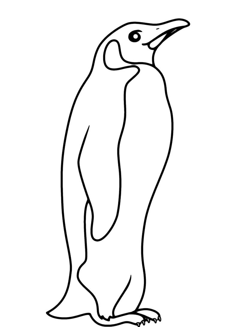 Pinguino da colorare 7