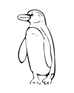 Pinguino da colorare 13