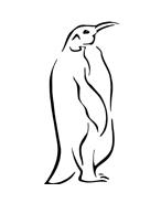 Pinguino da colorare 17