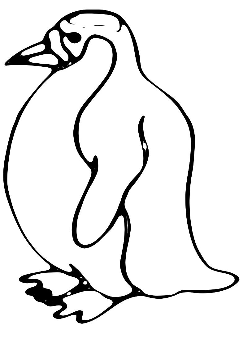 Pinguino da colorare 23