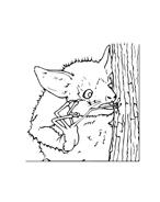 Pipistrello da colorare 4