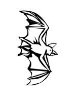 Pipistrello da colorare 7