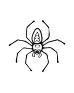 Ragno da colorare 2