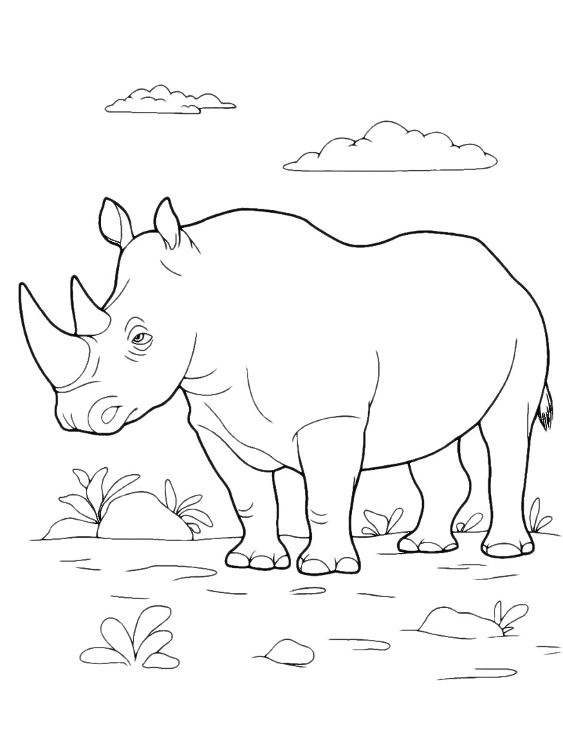 Rinoceronte da colorare