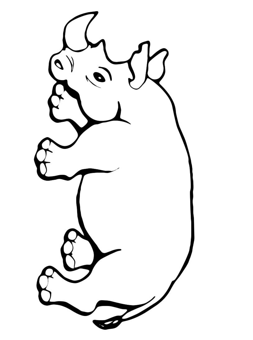 Rinoceronte da colorare 3
