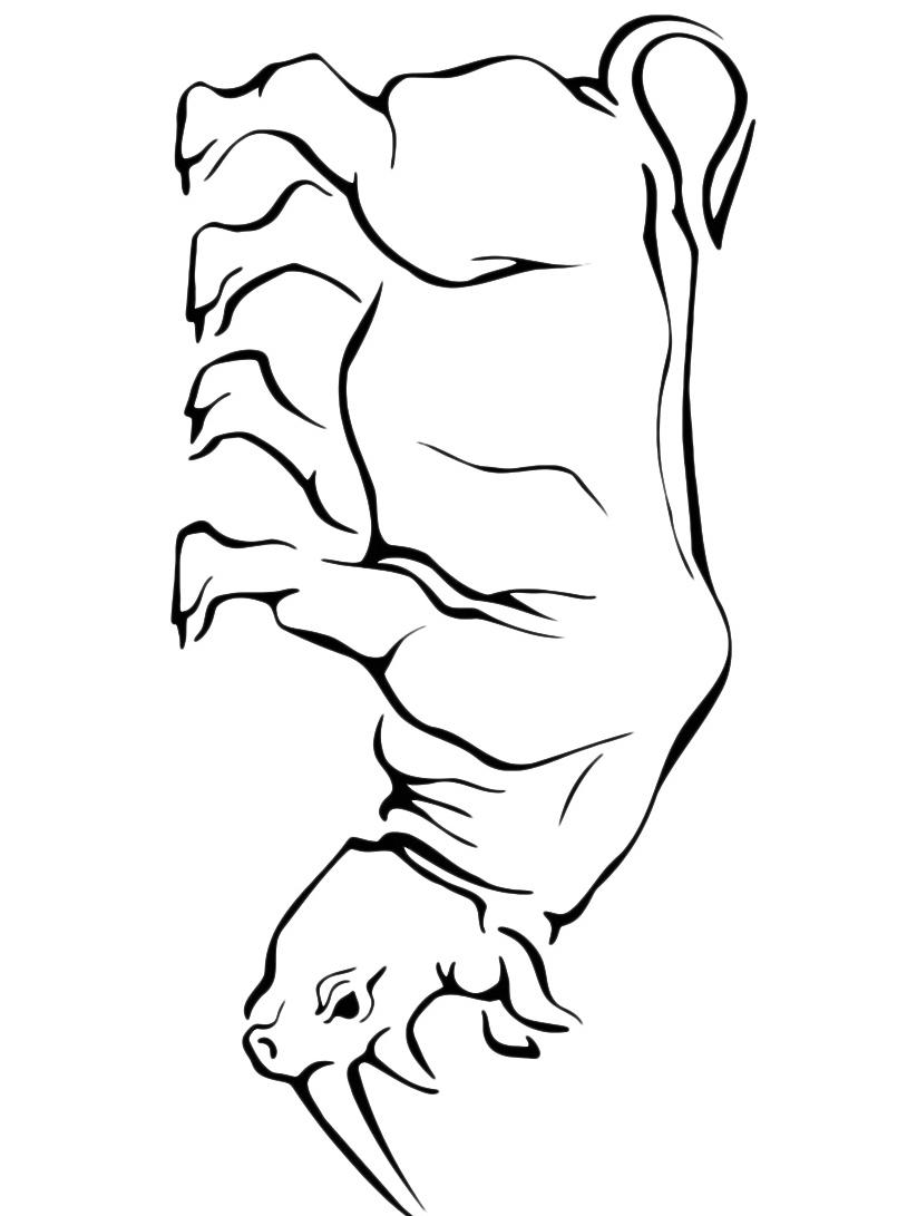 Rinoceronte da colorare 7