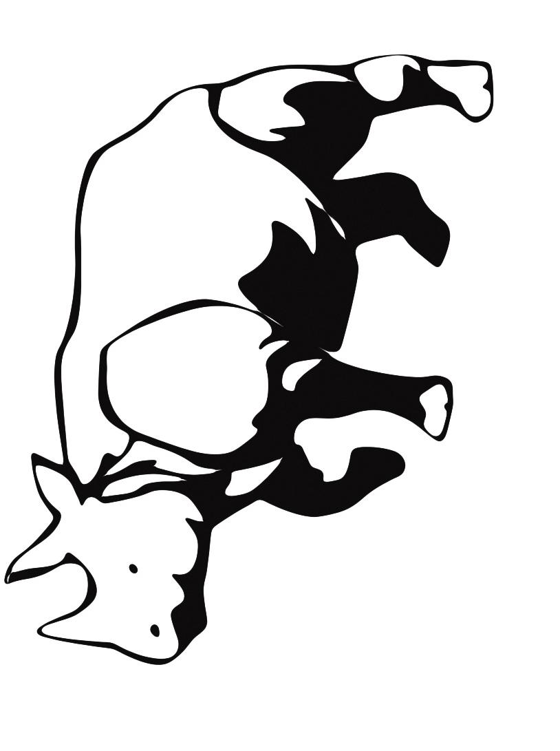 Rinoceronte da colorare 8