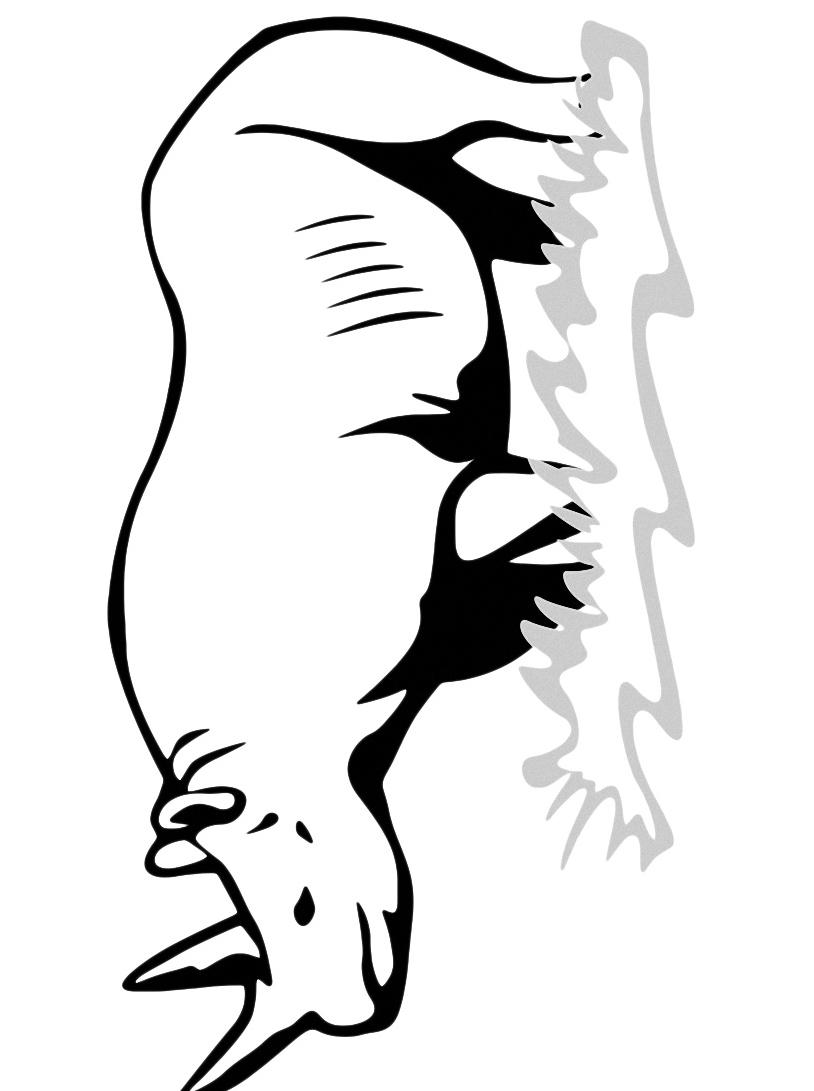 Rinoceronte da colorare 10