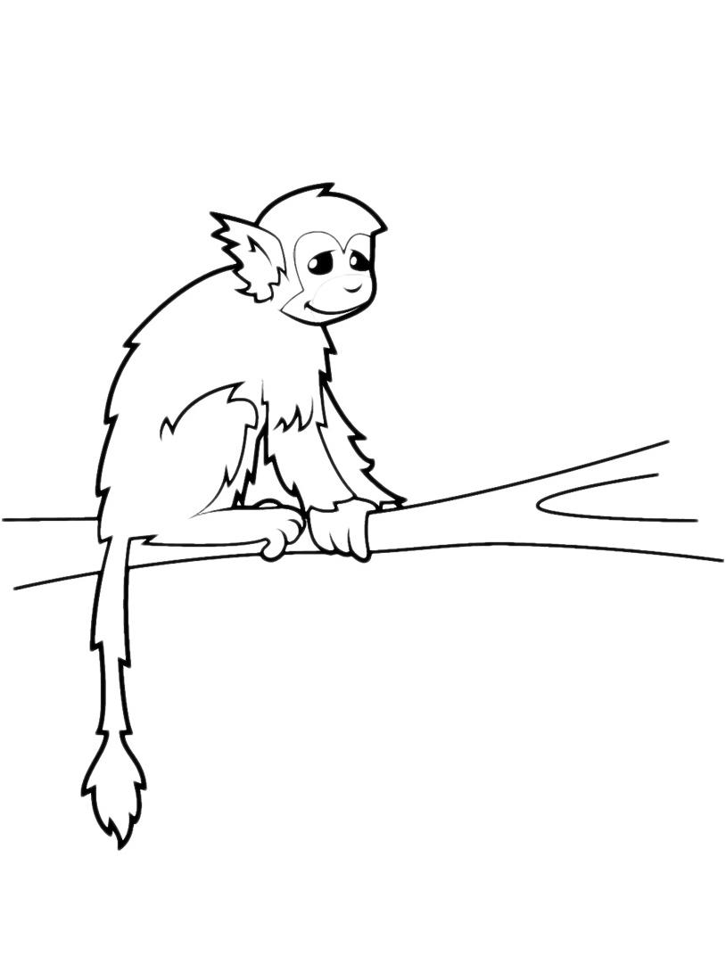 Scimmia da colorare 16