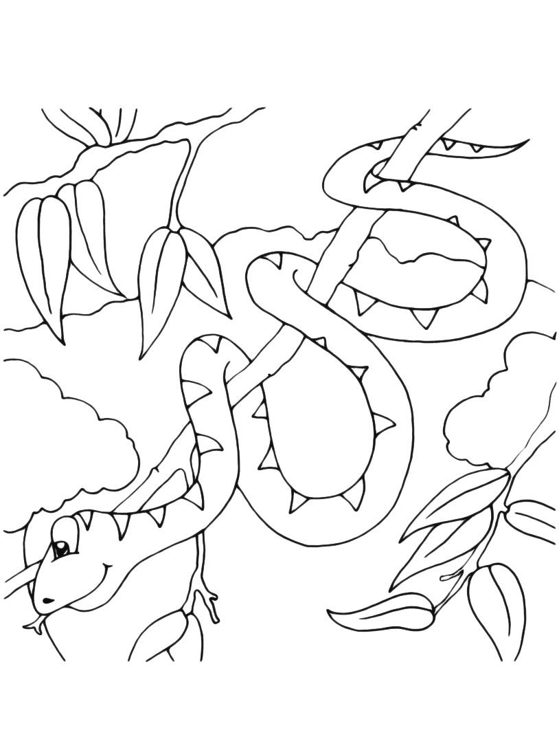 Serpente da colorare 16
