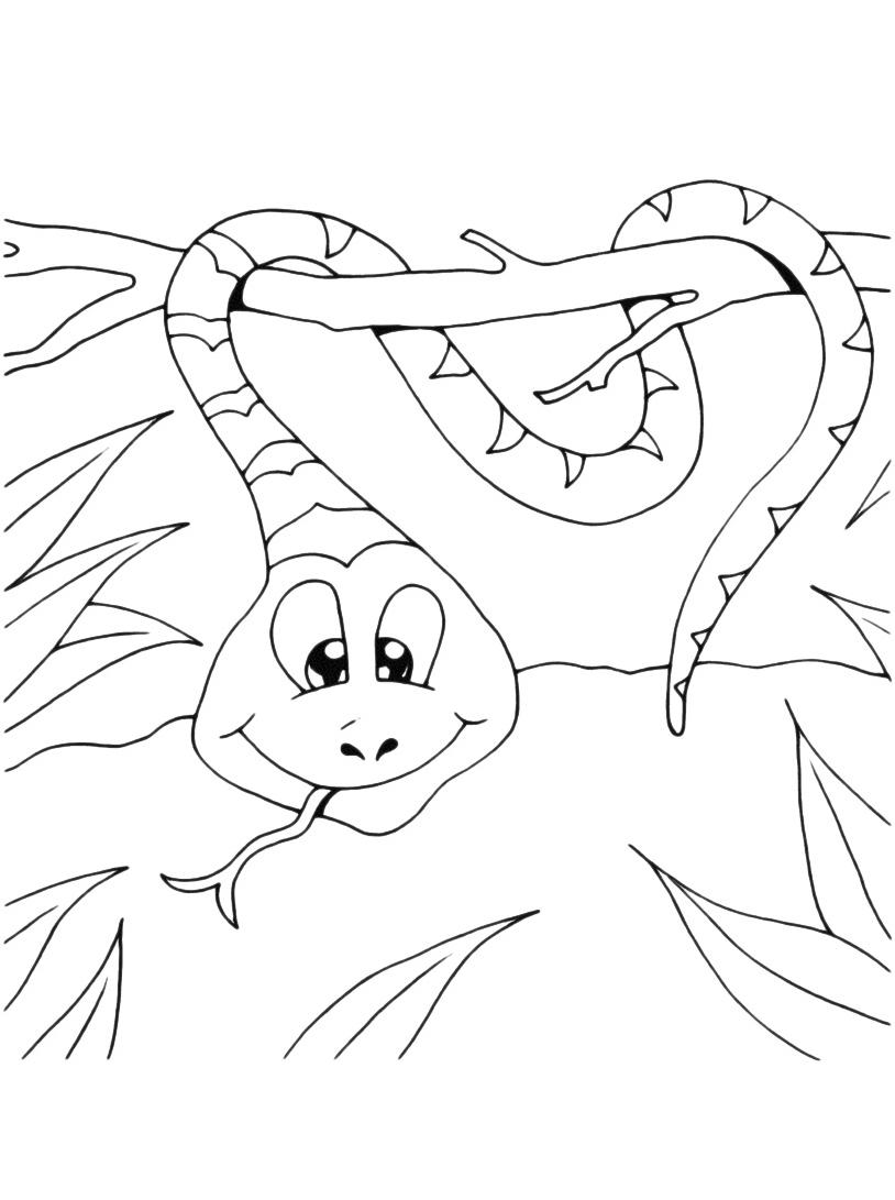 Serpente da colorare 43