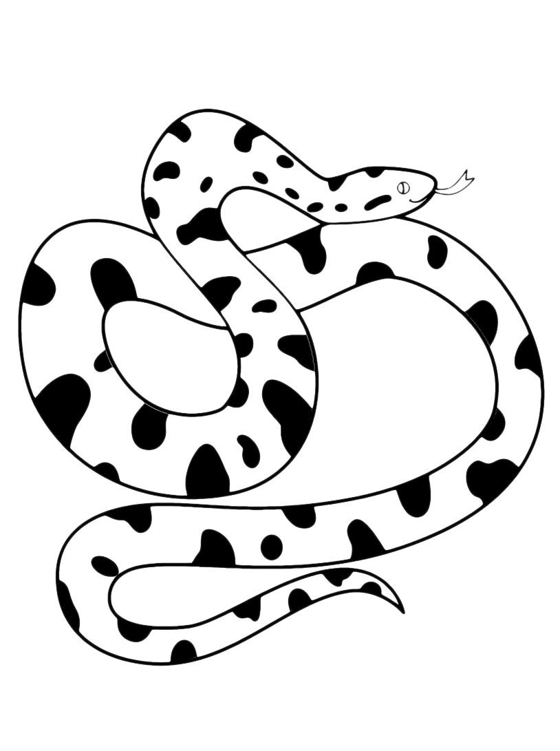 Serpente da colorare 44