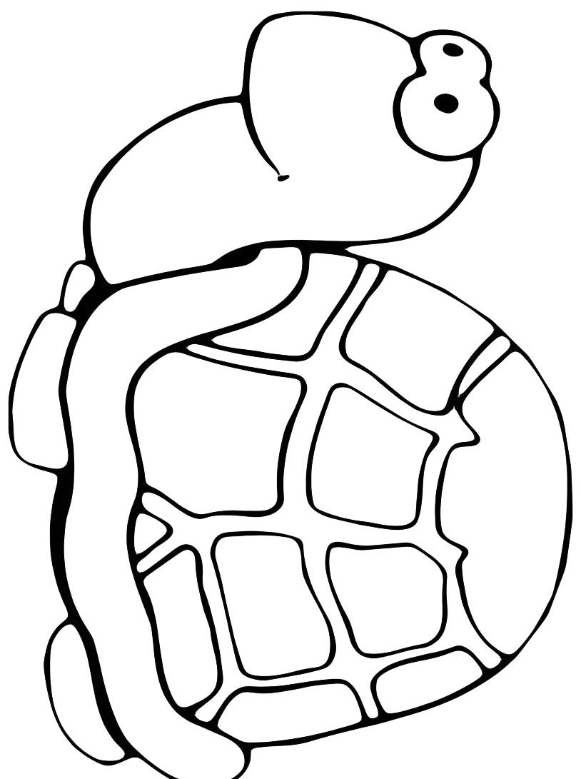 Tartaruga da colorare 6