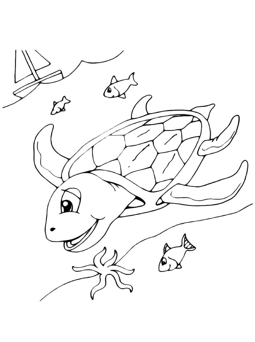 Tartaruga da colorare 15