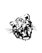 Tigri Da Colorare Disegnidacolorare It