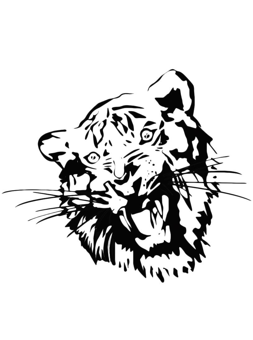 Tigre da colorare 5