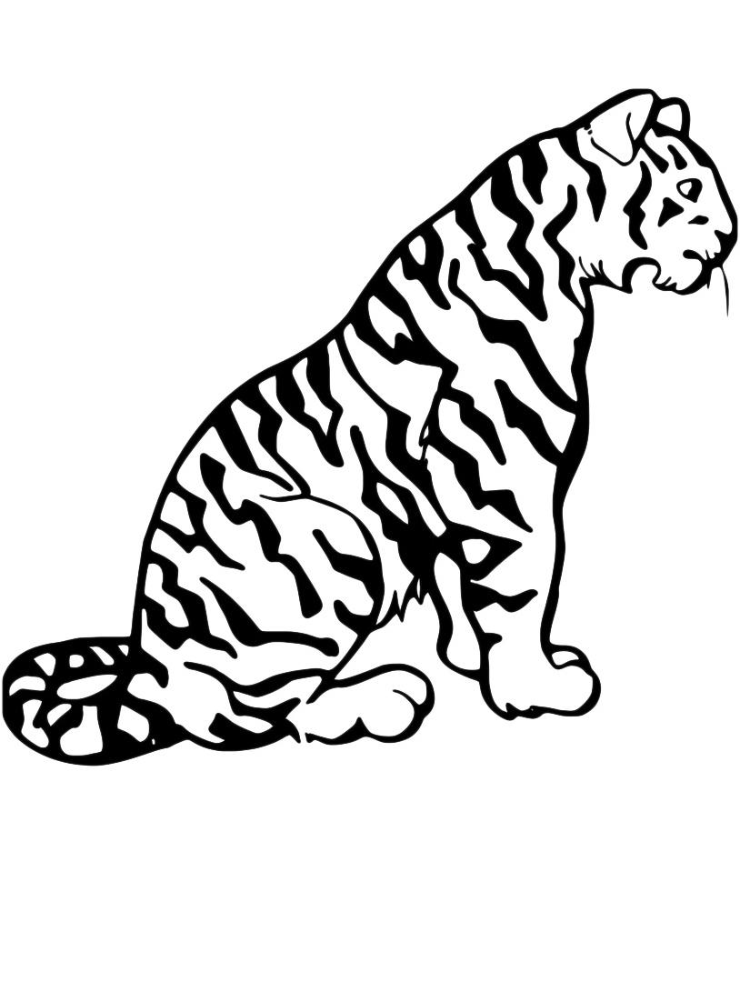 Tigre da colorare 25