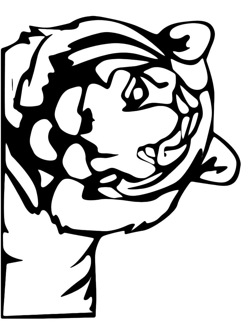 Tigre da colorare 36
